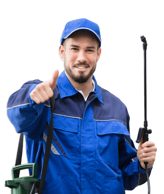 Michigan Exterminators, ProAction Pest COntrol