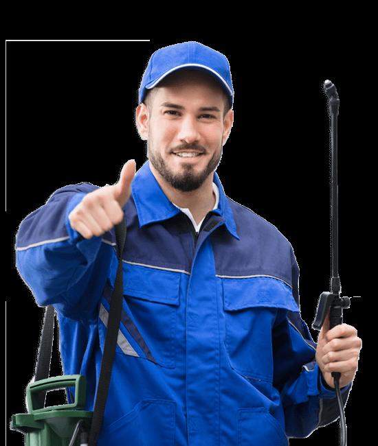 Michigan Exterminators, ProAction Pest COntrol